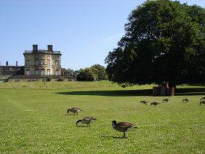 Bretton Hall and grounds2_JPG_jpg
