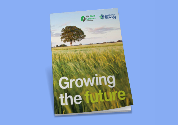 Growing the Future Report